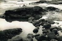 Beach. The Odyssey